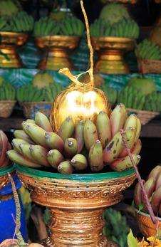 1.1348439442.golden-coconut