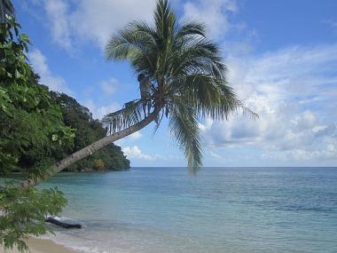 1.1353906987.2-beach