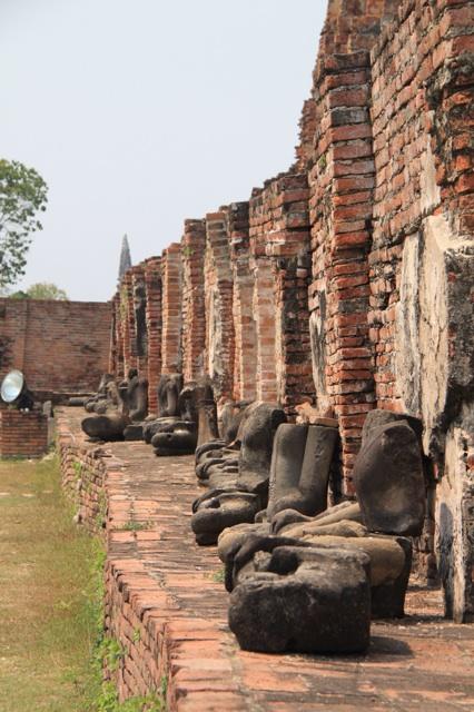 1.1360753084.buddhas