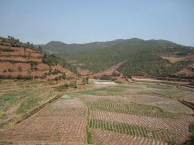 1.1362309177.outside-kunming