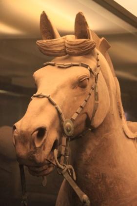 1.1362995464.terracotta-horse