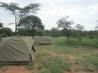 1.1325773653.camping-in-the-serengeti