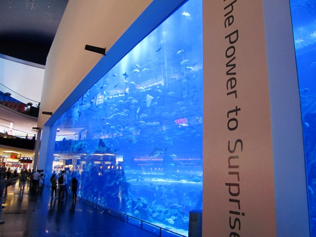 1.1367712000.wall-of-aquarium-in-the-mall