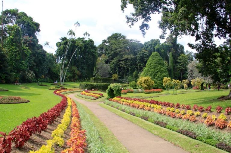 2.1383837621.botanicals---flower-garden