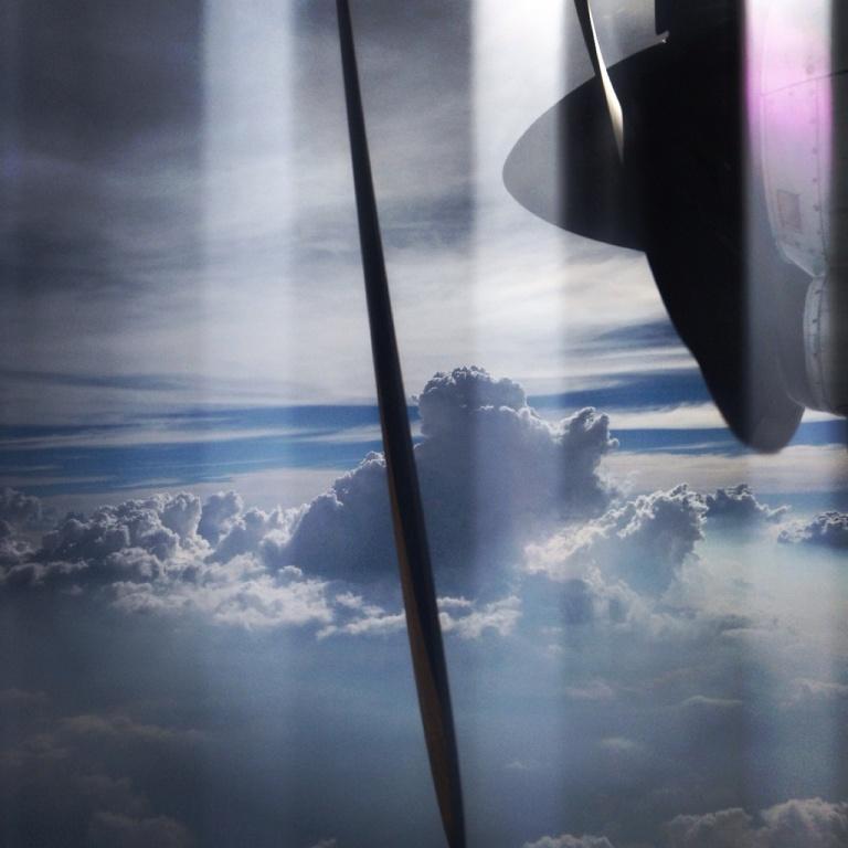 3.1398211200.flying-away