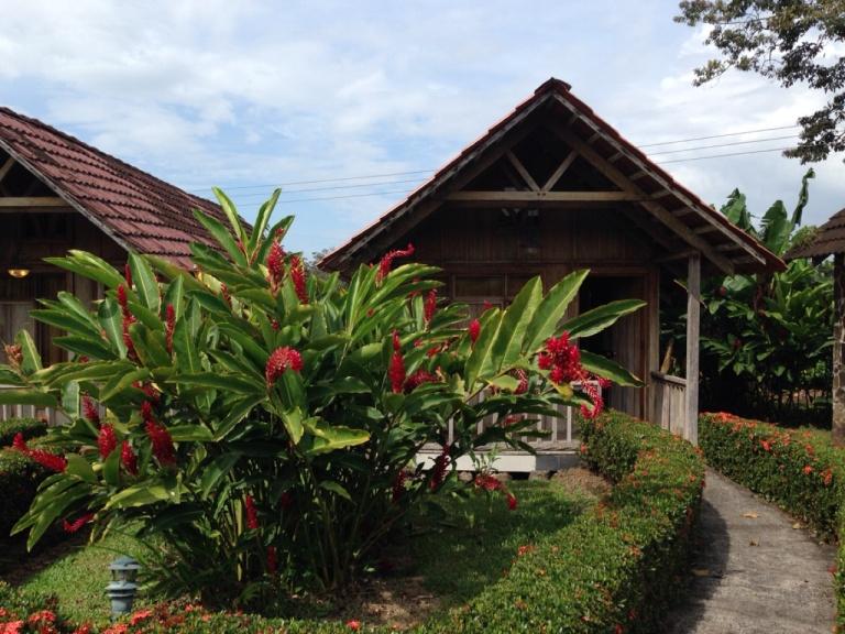 3.1398816000.mini-hut-hotel
