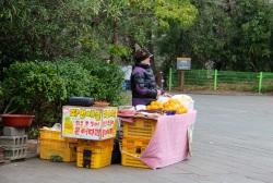 5.1458641580.oranges