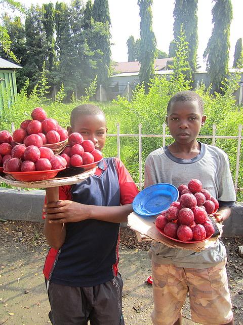 1.1326126097.plum-boys