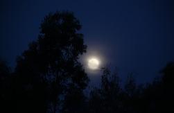 1.1326126097.the-full-moon